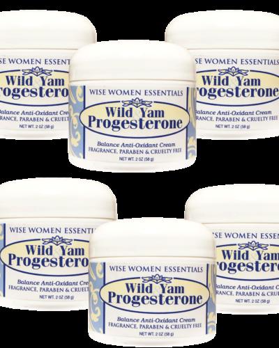 Wise Essentials -  wild yam 6 pack balance